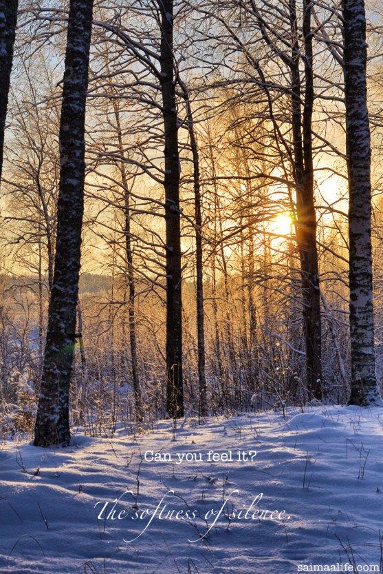 silent-winter-scenery