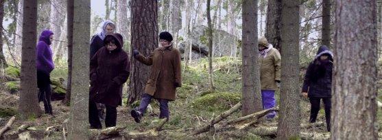 forest-lolling-jollas