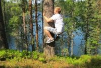 24-man-in-a-tree-by-the-lake-saimaa