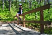 25-Walking-bridge-on-Punkaharju-ridge-area
