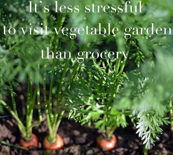 One good reason to have vegetable garden lessstress naturally mentalhealthhellip