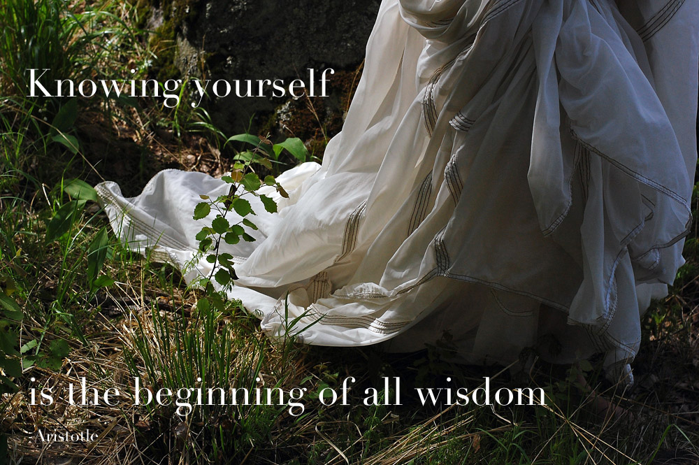 knowing-yourself-is-the-beginning-of-all-wisdom-quote