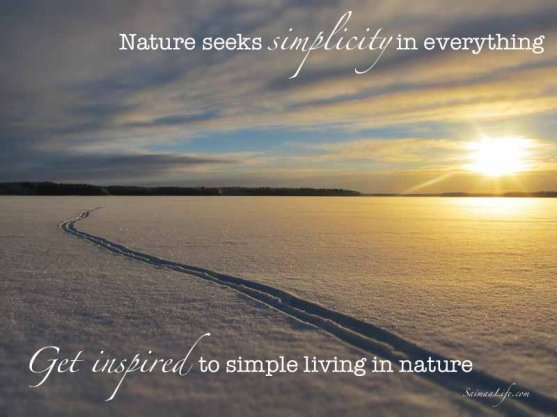 Nature Inspires To Simplicity - SaimaaLife