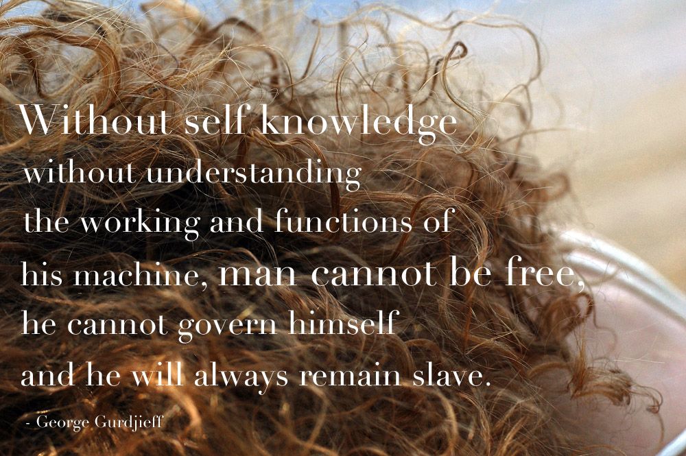without-self-knowledge-without-understanding-quote