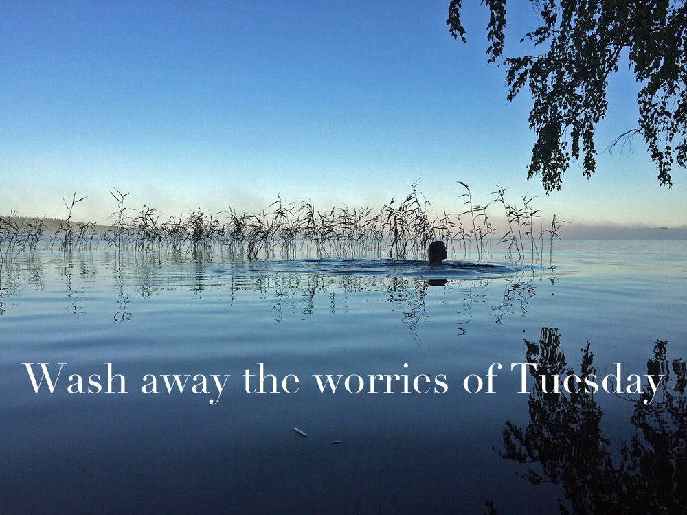 fresh-morning-wash-away-the-worries-of-tuesday