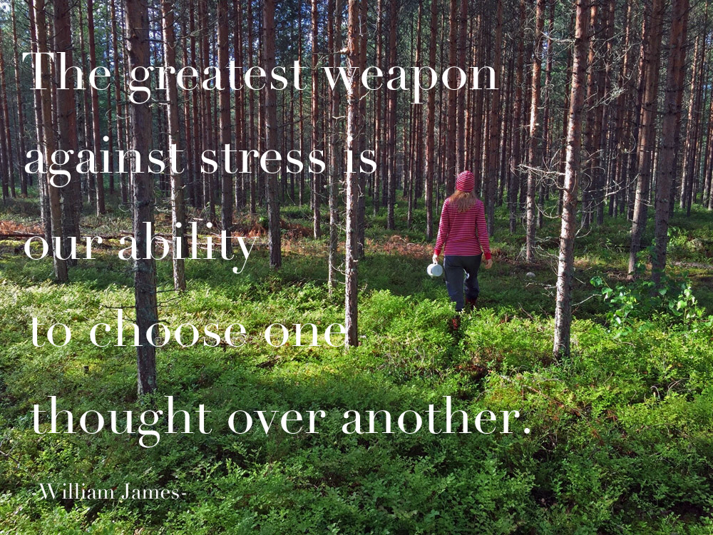 the-greatest-weapon-against-stress-quote