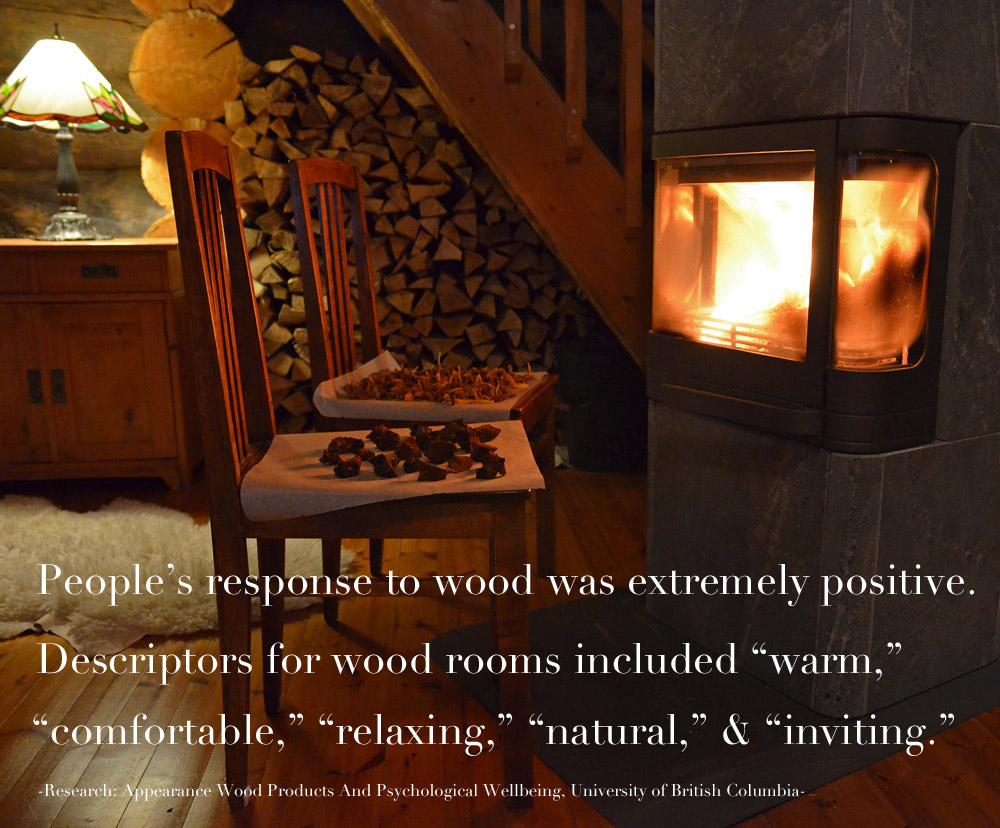 psychological-impact-of-wood