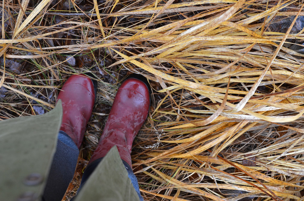 Aimless Wandering And Wondering Technique Wet Feet