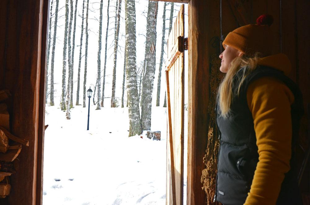 slower-rhythm-woman-watching-trees-outdoors