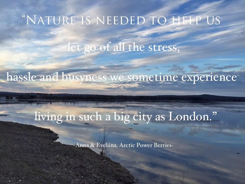 nature-in-mind-interview-arctic-power-berries