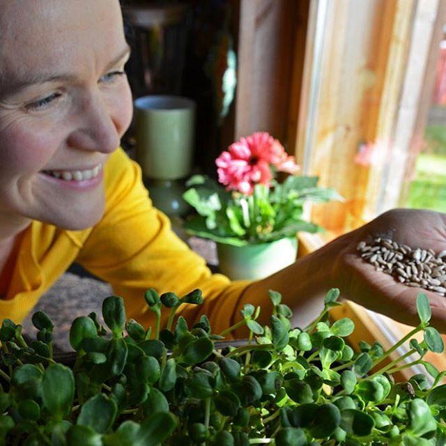 Growing food indoors is so rewarding! In 7 days thesehellip