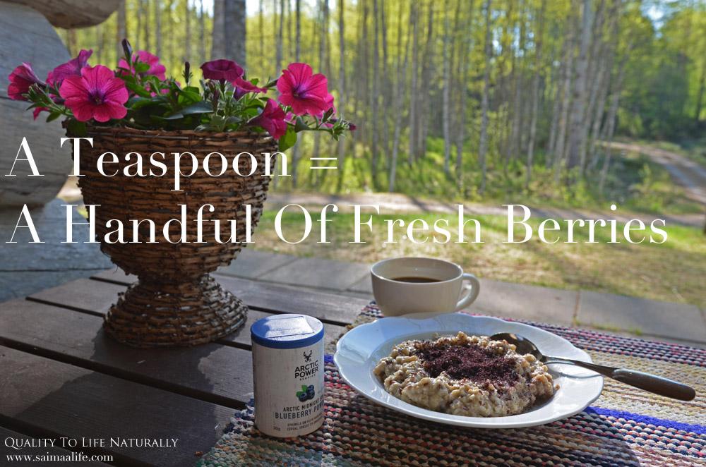 arctic-power-berries-berry-powder-and-porridge-breakfast-outdoors