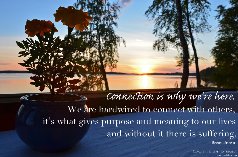 connection-is-why-we-are-here-brene-brown-quote