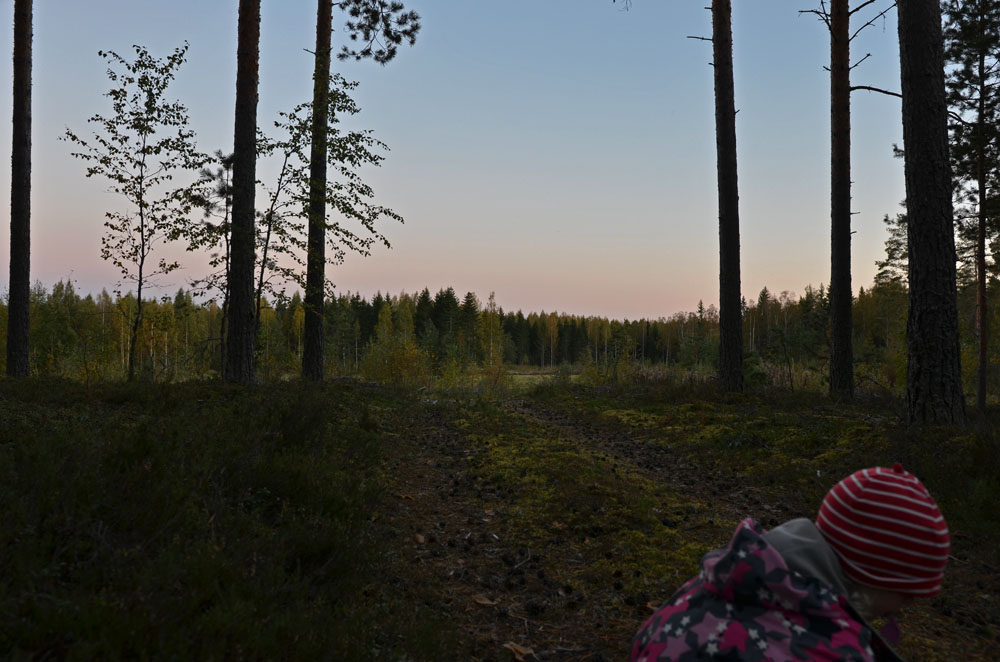 child-playing-in-forest