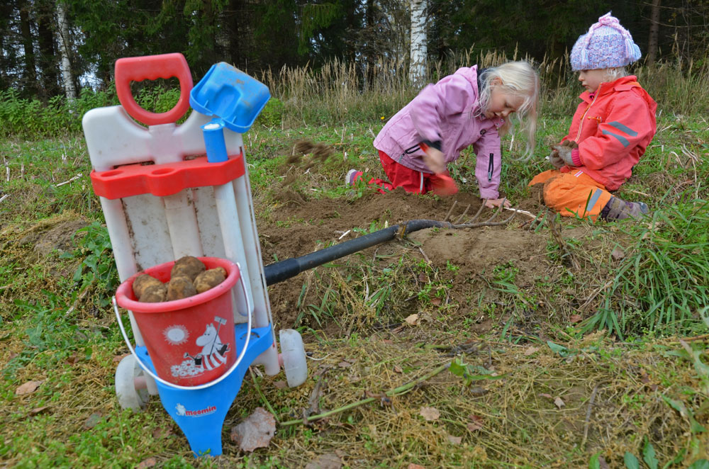 children-working-in-the-vegetable-garden