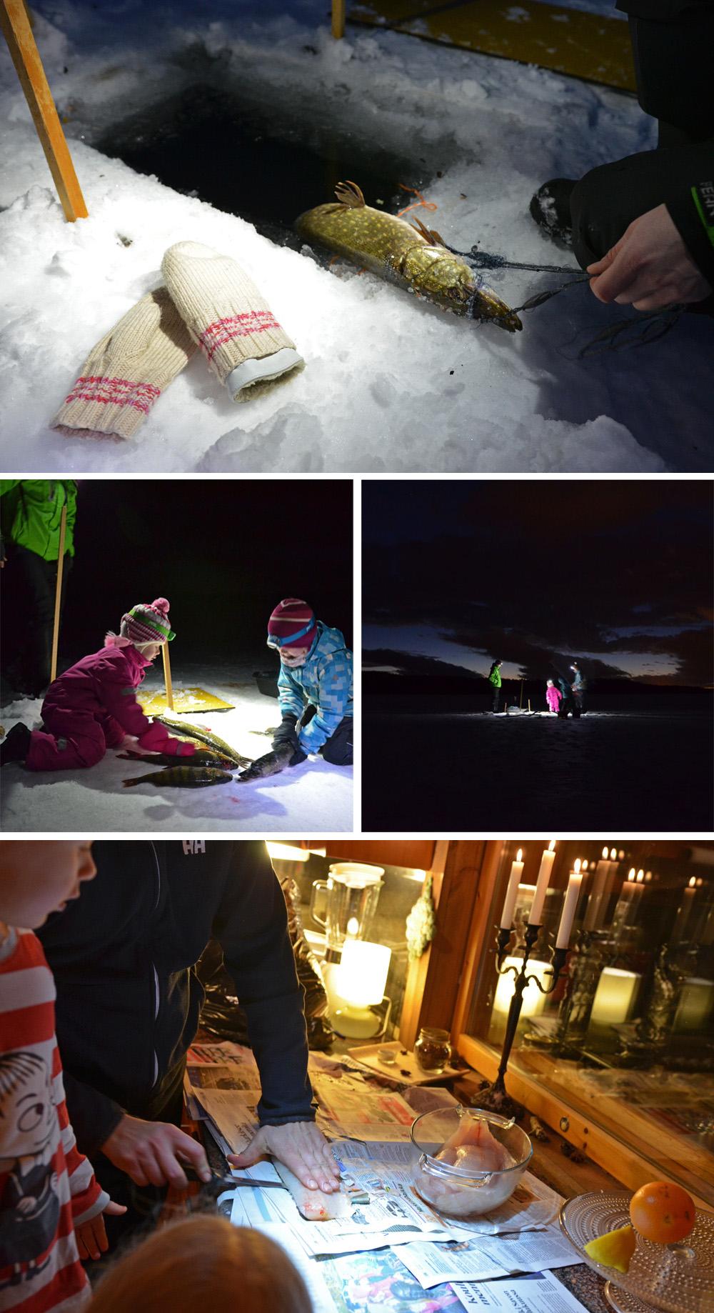 Catch of the day - Winter fishing - SaimaaLife.com