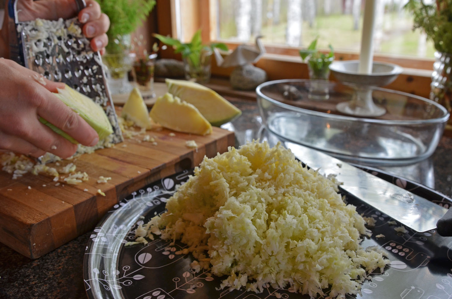 Grating white cabbage for traditional Finnish cabbage casserole
