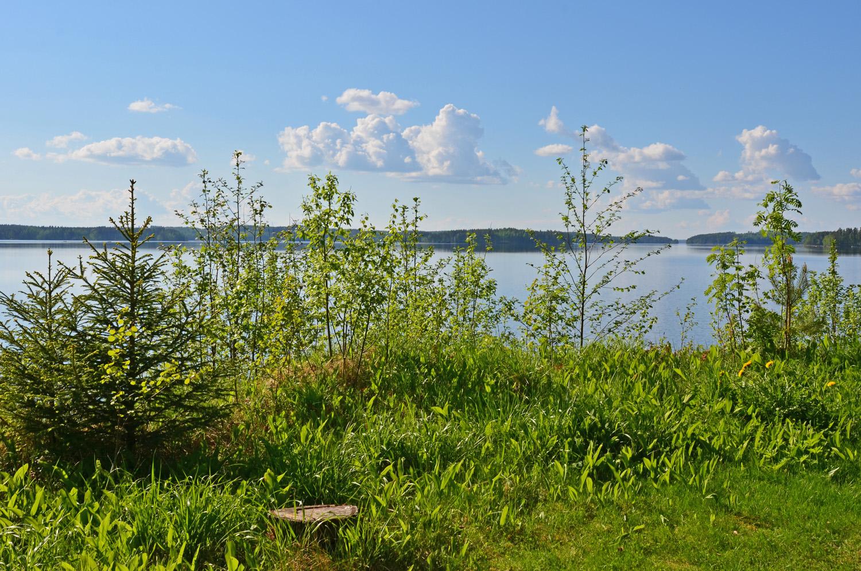Summer day in Saimaa, Finnish Lakeland - SaimaaLife.com