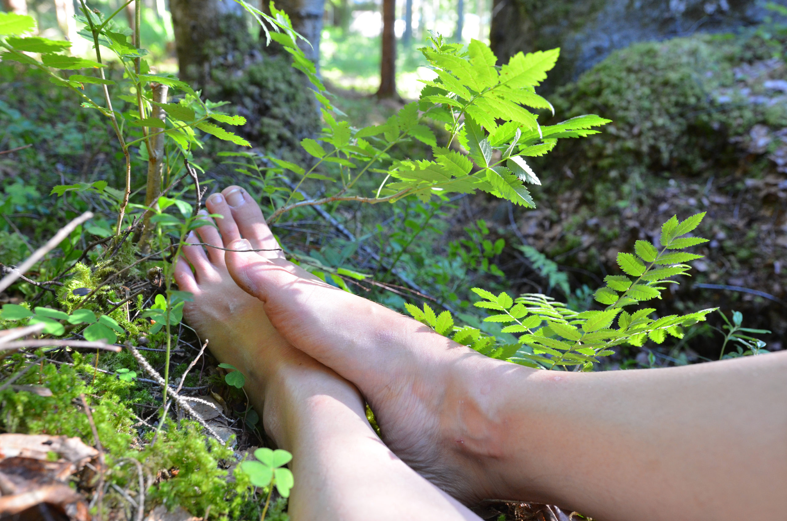 The beauty free, natural movement in the forest