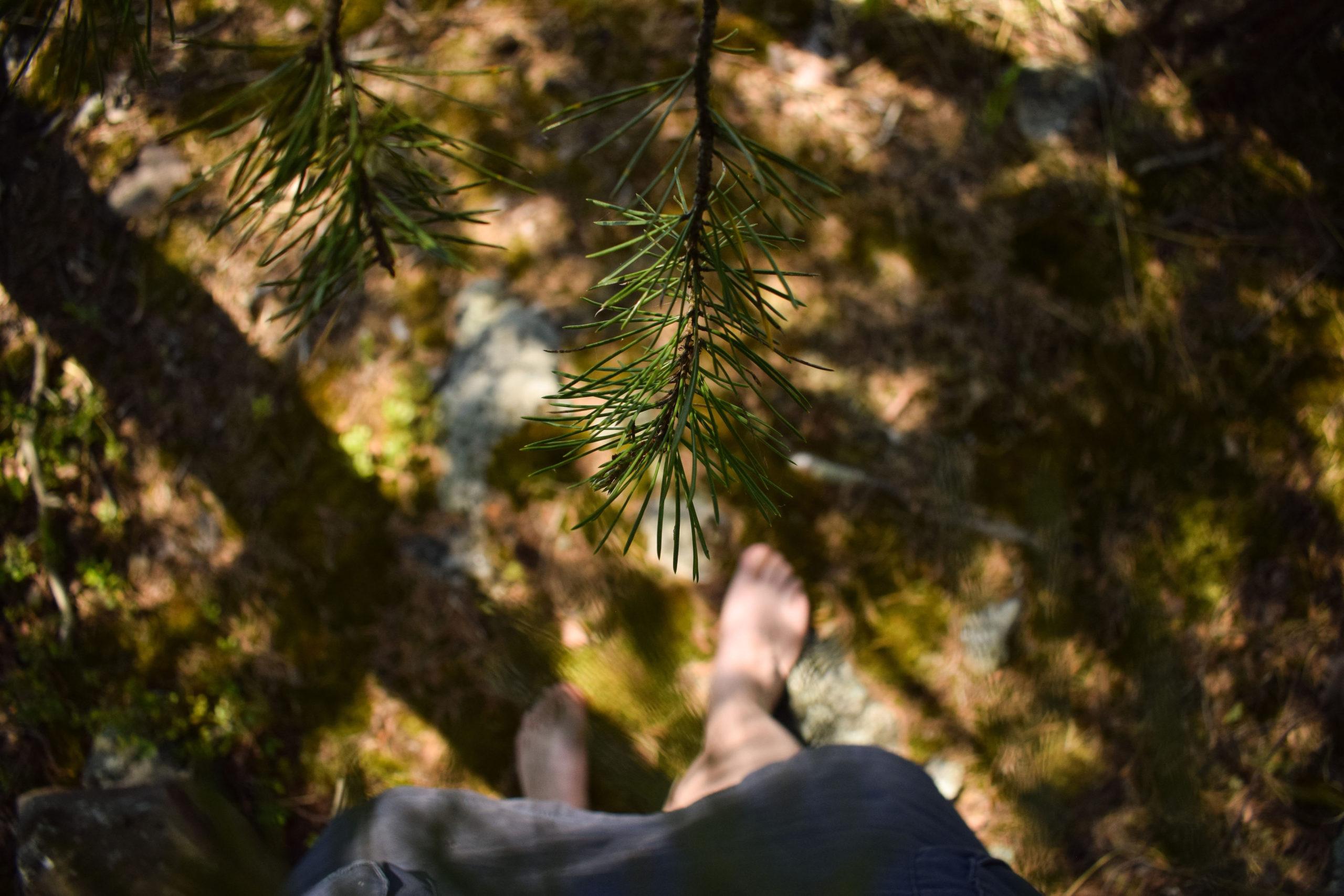 Woma walking barefoot in the forest at Kukkoniemen Lomamökit rental cottages in Punkaharju, Saimaa