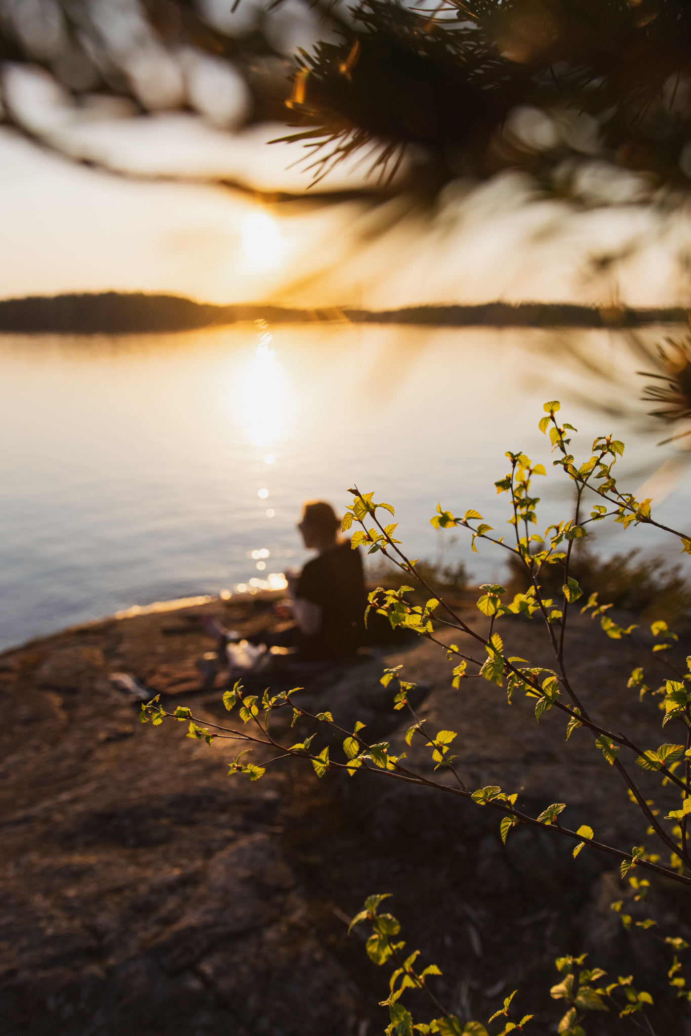 Woman sitting in nature by the lake and watching the sunset in Saimaa, Finland