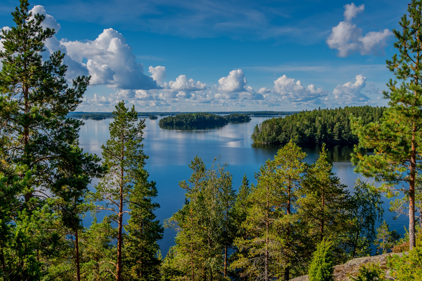 Hear spring in Saimaa and Linnansaari national park travel call and feel refreshed and reborn