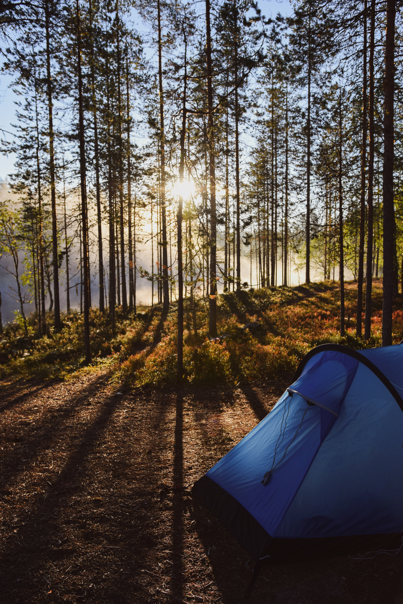 Finnish summer ways to connect with nature and yourself by sleeping outside in a tent