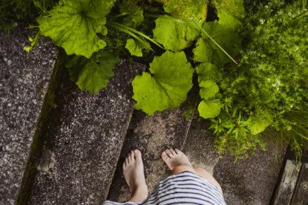 feet, women, plants, green, summer evening, after sauna, sunset, finland